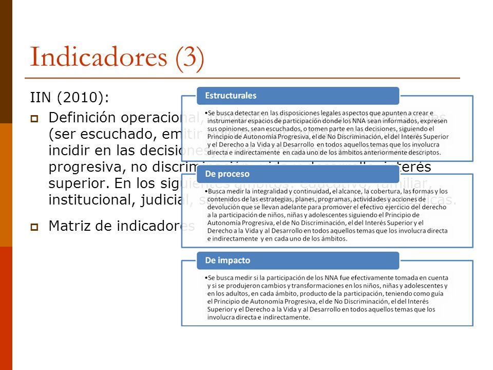 Indicadores (3) IIN (2010):