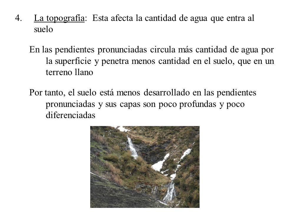 La topografía: Esta afecta la cantidad de agua que entra al suelo