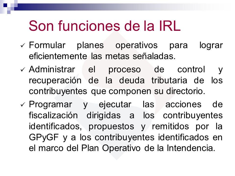 Son funciones de la IRLFormular planes operativos para lograr eficientemente las metas señaladas.