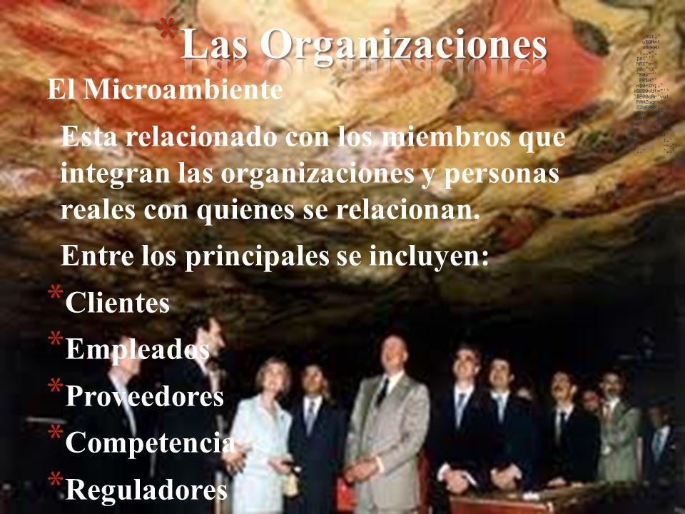 Las Organizaciones El Microambiente