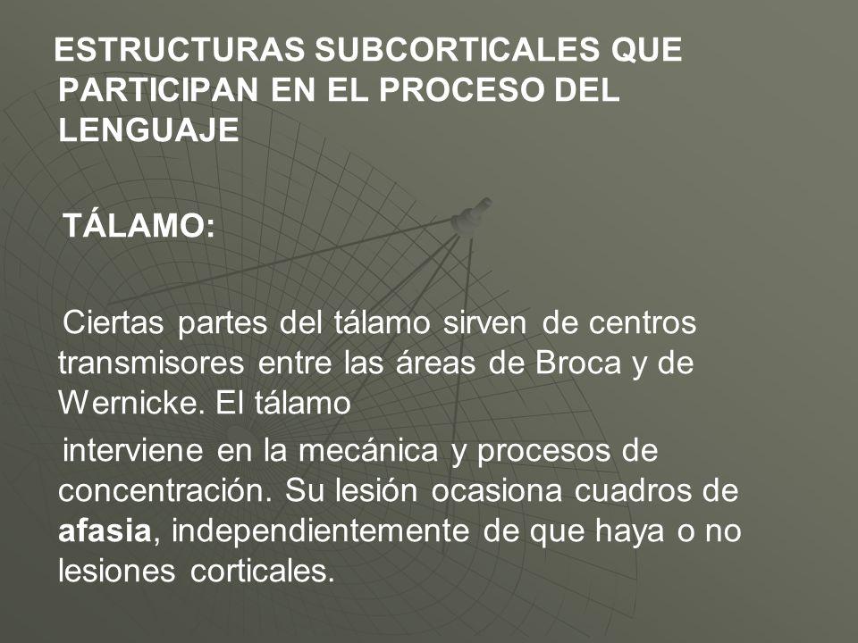 ESTRUCTURAS SUBCORTICALES QUE PARTICIPAN EN EL PROCESO DEL LENGUAJE