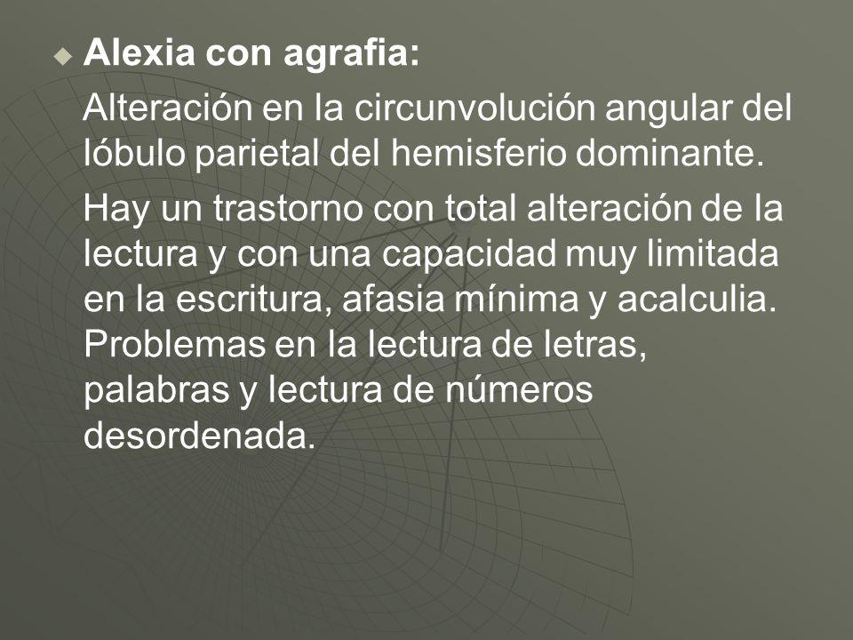 Alexia con agrafia:Alteración en la circunvolución angular del lóbulo parietal del hemisferio dominante.
