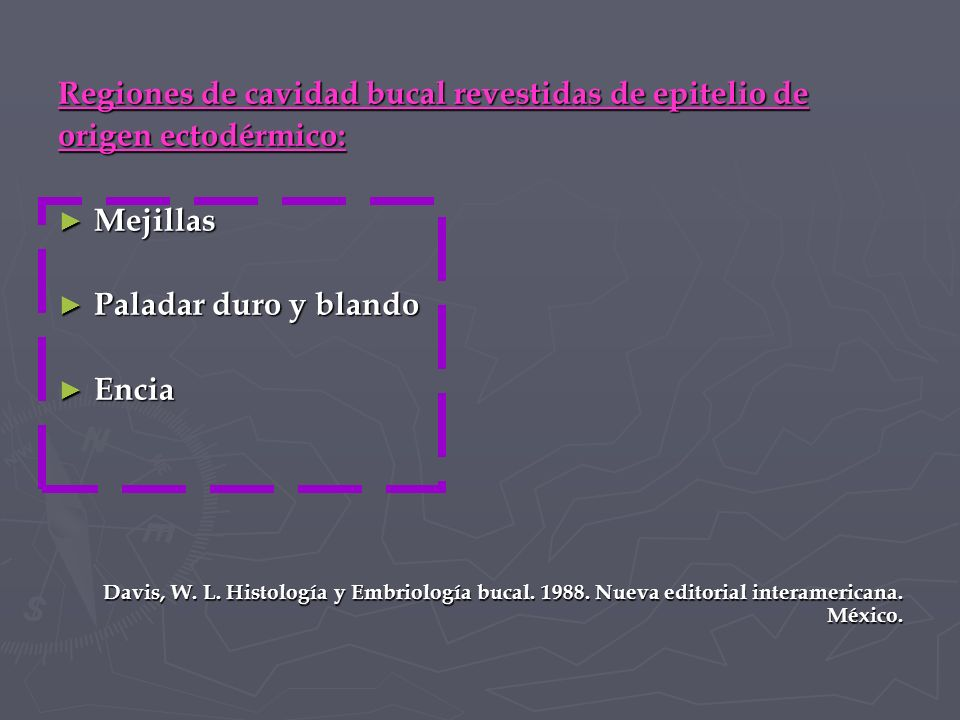 Regiones de cavidad bucal revestidas de epitelio de