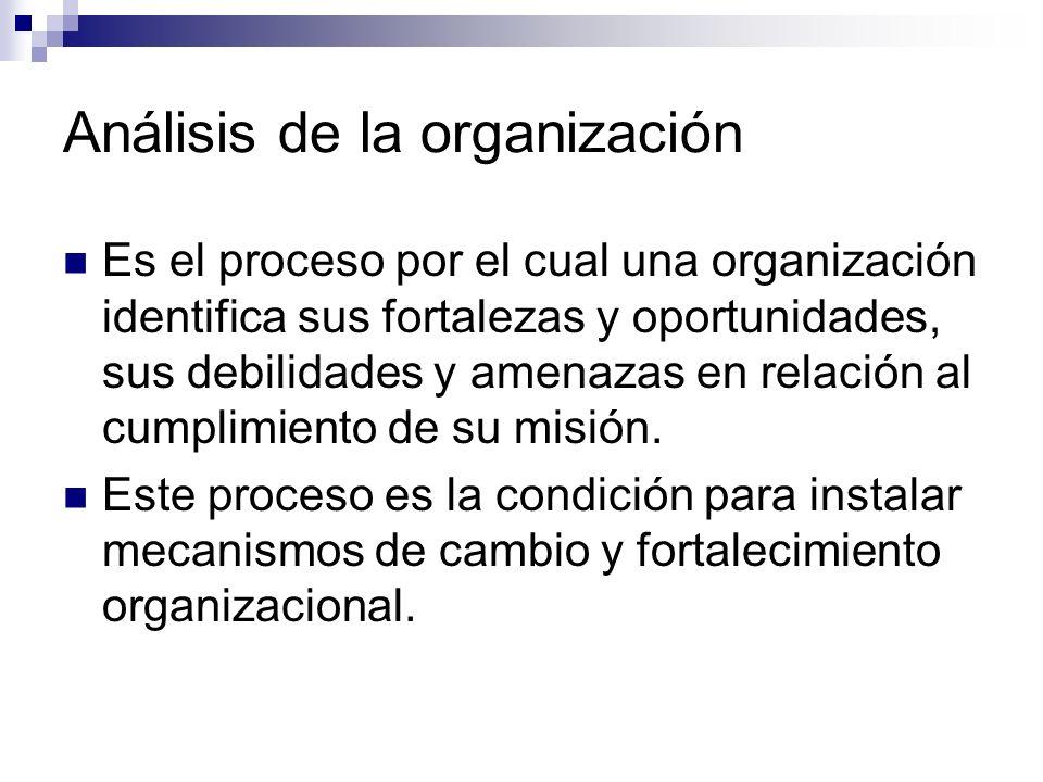 Análisis de la organización