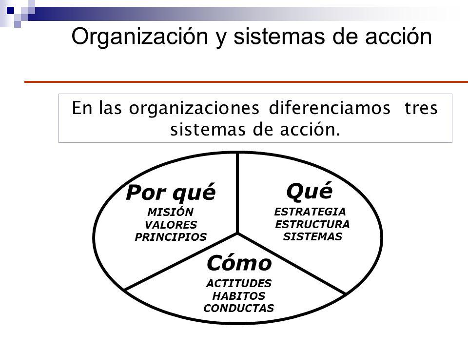 Organización y sistemas de acción
