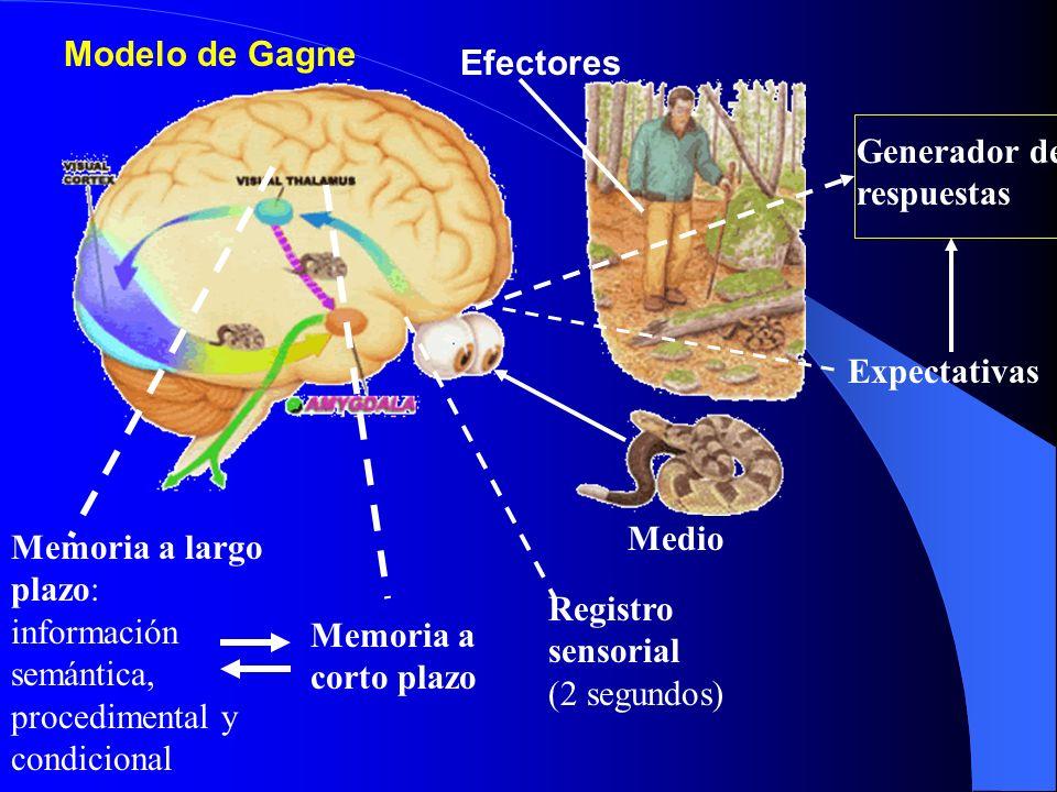 Modelo de Gagne Efectores. Generador de respuestas. Expectativas. Medio.