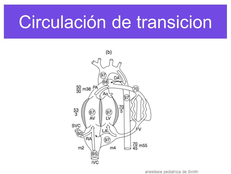 Circulación de transicion