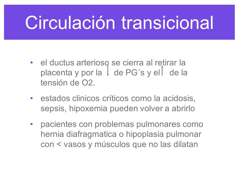Circulación transicional