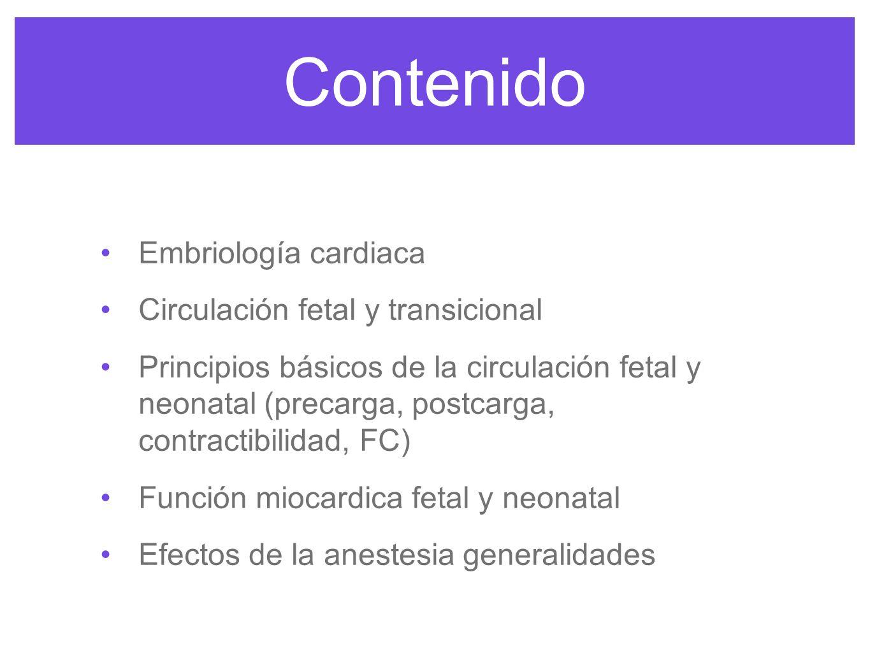 Contenido Embriología cardiaca Circulación fetal y transicional