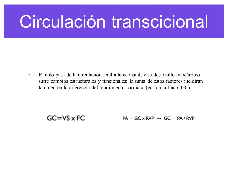 Circulación transcicional