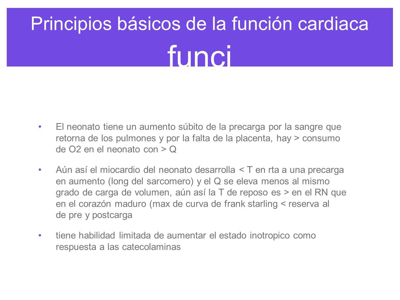 Principios básicos de la función cardiaca funci