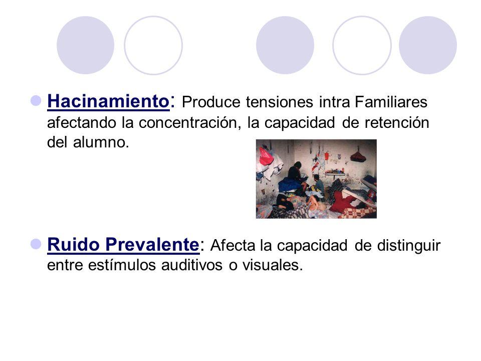 Hacinamiento: Produce tensiones intra Familiares afectando la concentración, la capacidad de retención del alumno.