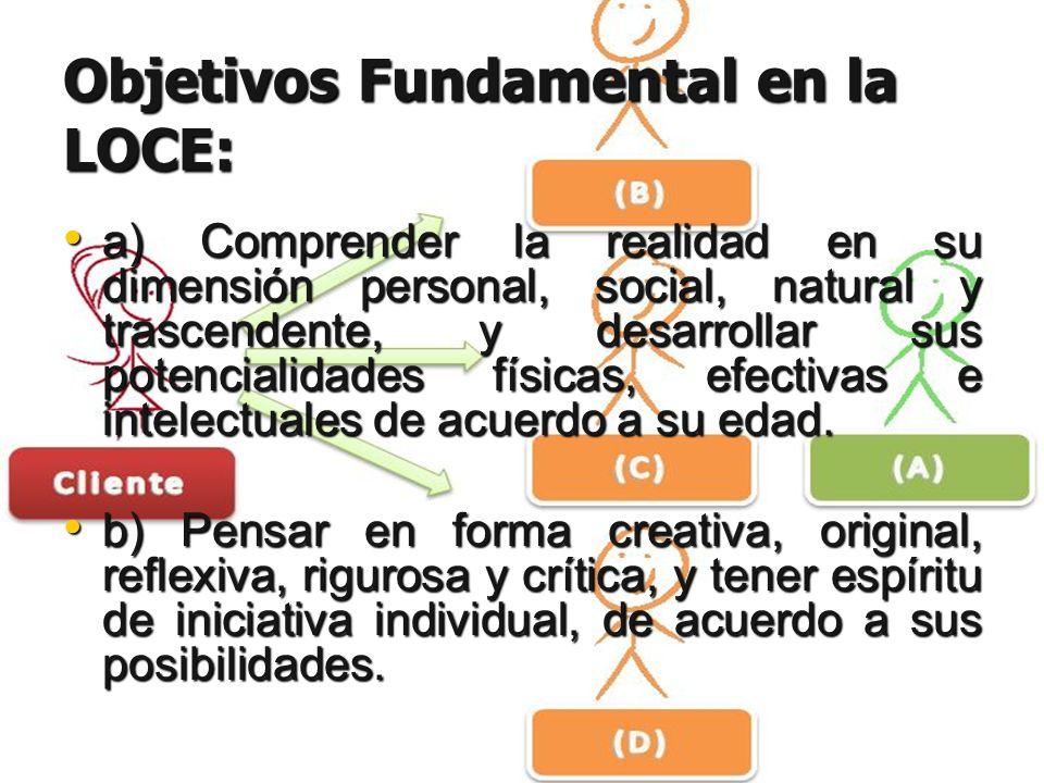Objetivos Fundamental en la LOCE: