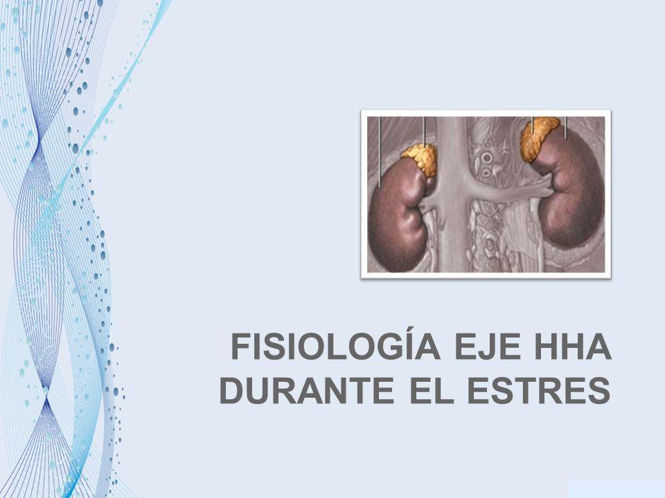 FISIOLOGÍA EJE HHA DURANTE EL ESTRES