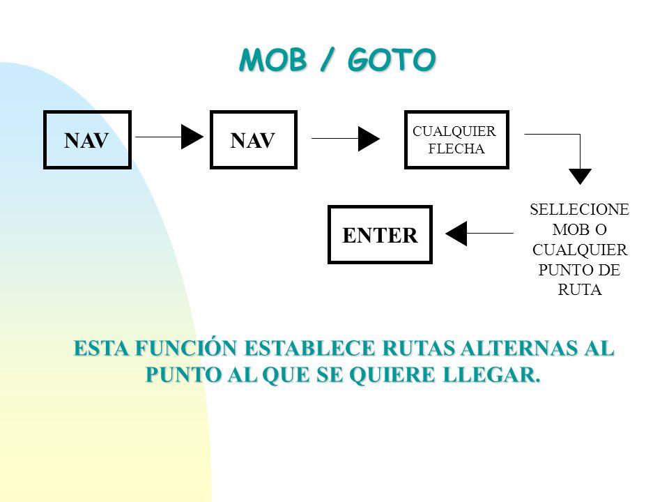 SELLECIONE MOB O CUALQUIER PUNTO DE RUTA