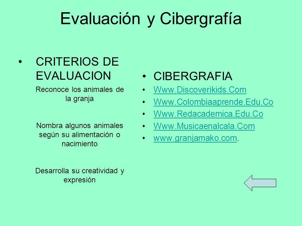 Evaluación y Cibergrafía
