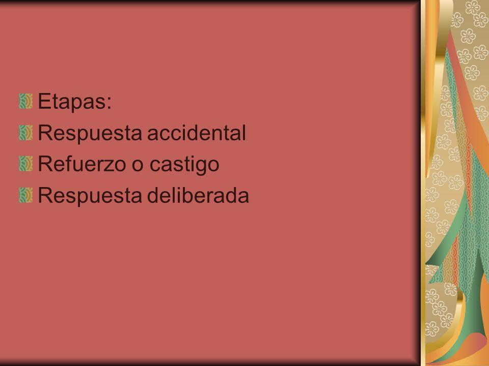 Etapas: Respuesta accidental Refuerzo o castigo Respuesta deliberada