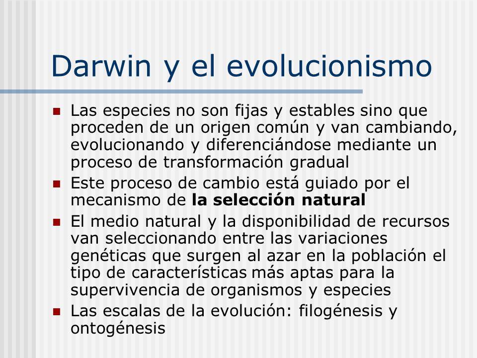 Darwin y el evolucionismo