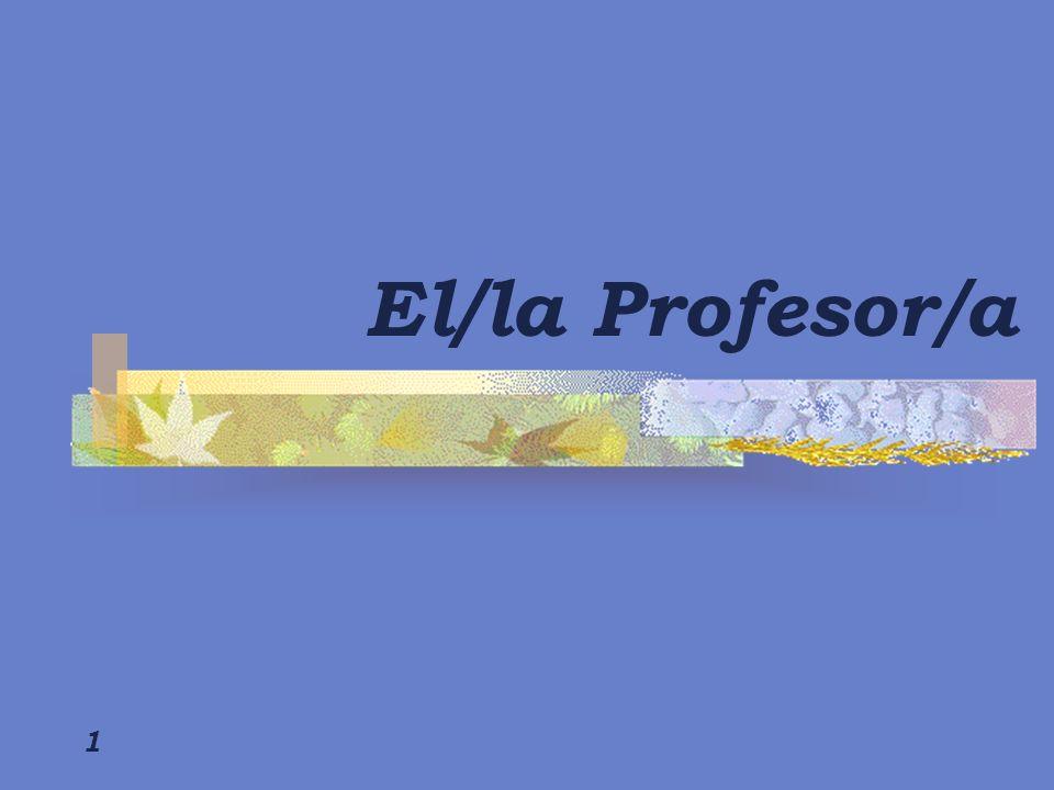 El/la Profesor/a