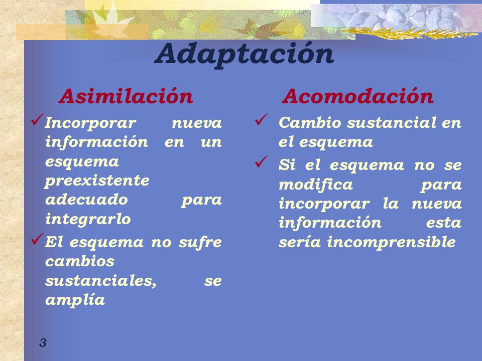 Adaptación Asimilación Acomodación