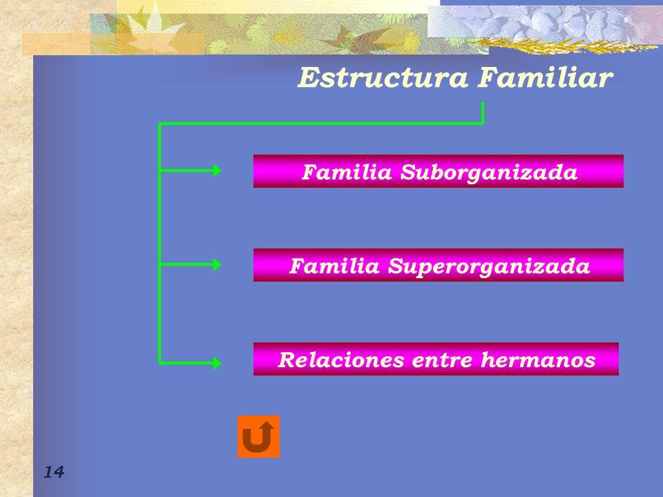 Estructura Familiar Familia Suborganizada Familia Superorganizada