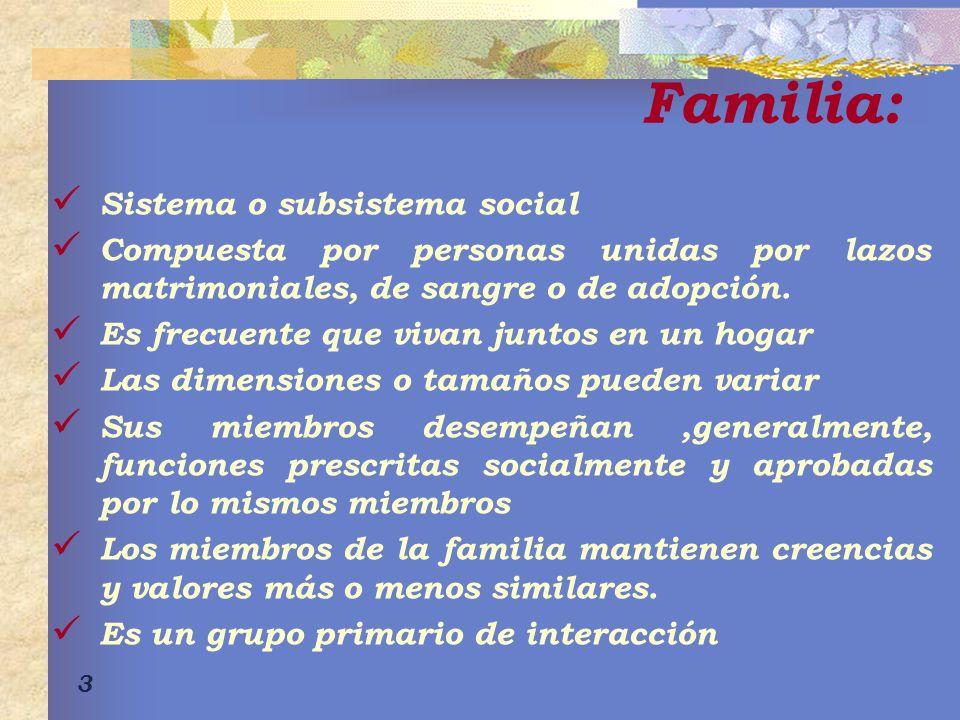 Familia: Sistema o subsistema social