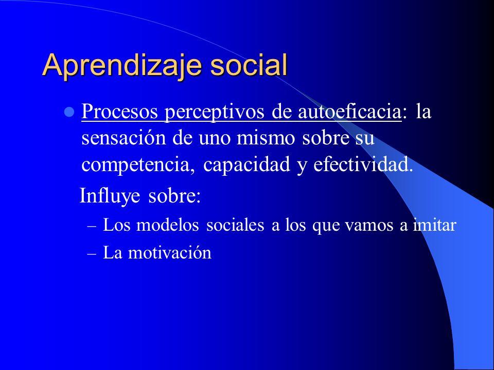 Aprendizaje social Procesos perceptivos de autoeficacia: la sensación de uno mismo sobre su competencia, capacidad y efectividad.