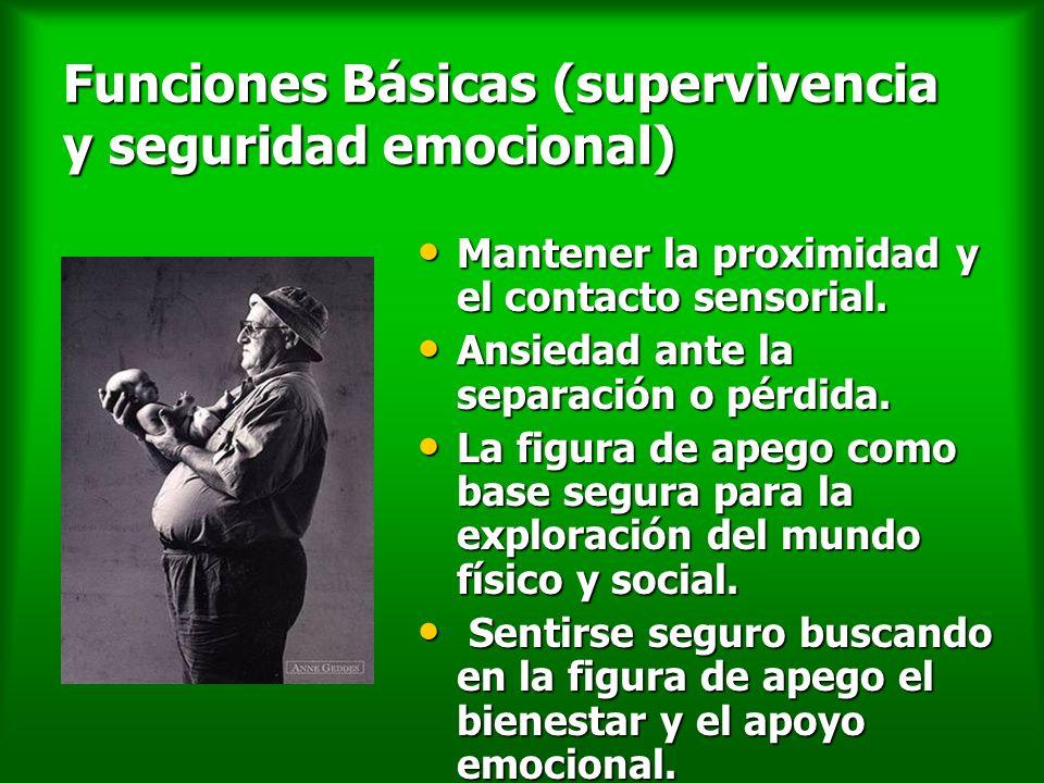 Funciones Básicas (supervivencia y seguridad emocional)