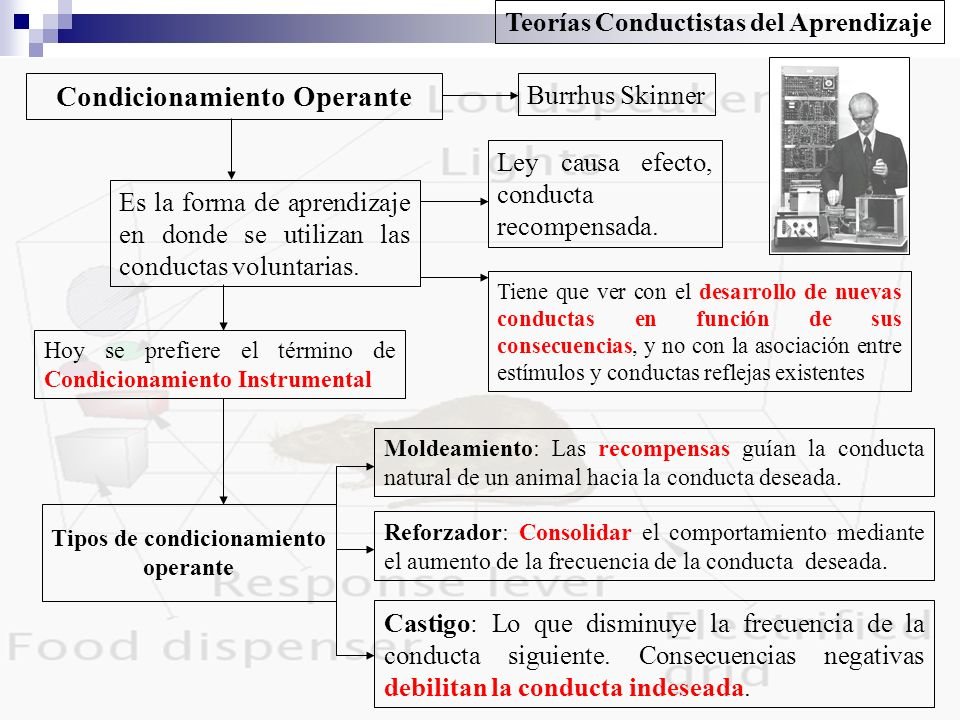 Condicionamiento Operante Tipos de condicionamiento operante