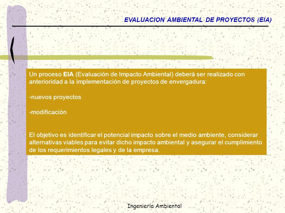 EVALUACION AMBIENTAL DE PROYECTOS (EIA)