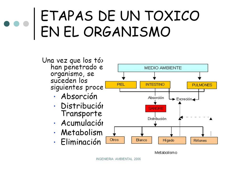 ETAPAS DE UN TOXICO EN EL ORGANISMO