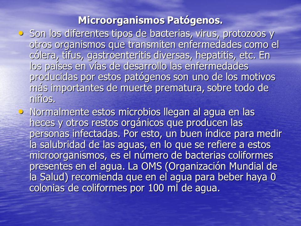 Microorganismos Patógenos.