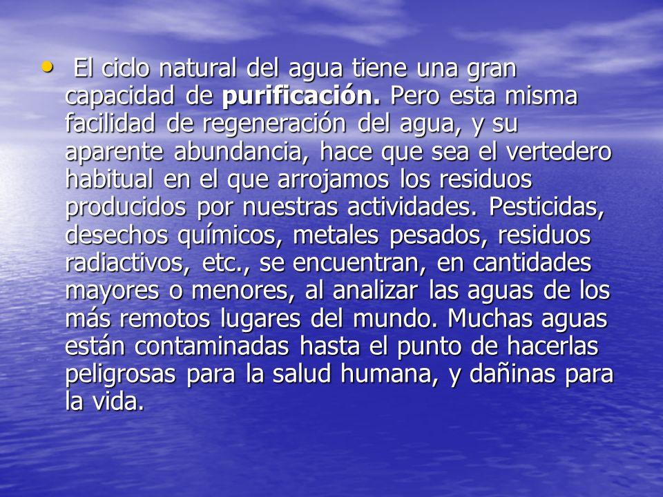 El ciclo natural del agua tiene una gran capacidad de purificación