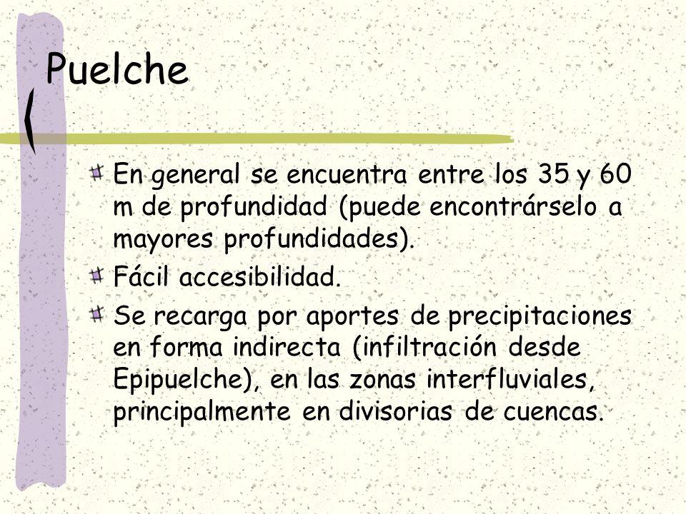 Puelche En general se encuentra entre los 35 y 60 m de profundidad (puede encontrárselo a mayores profundidades).