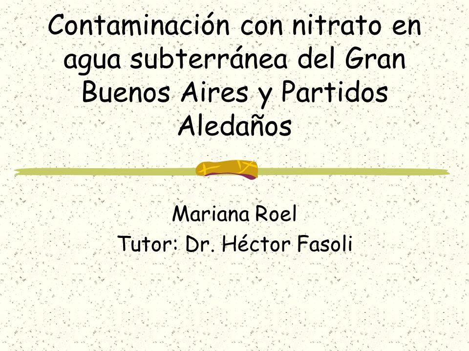 Mariana Roel Tutor: Dr. Héctor Fasoli