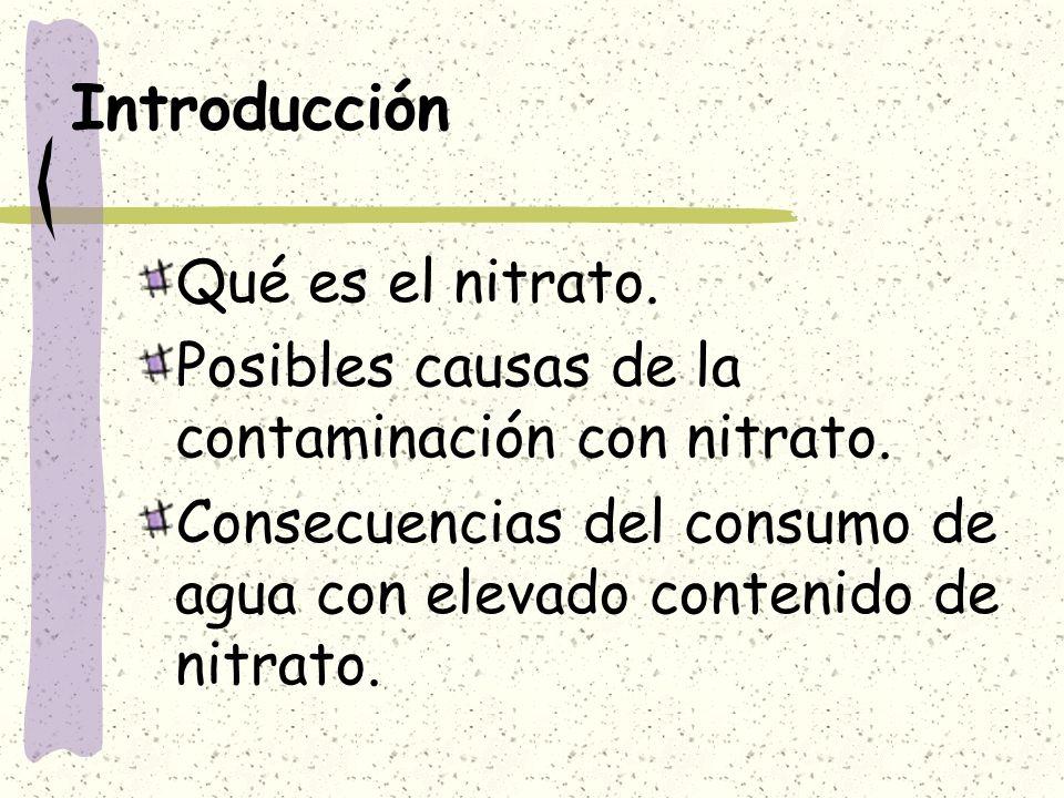 Introducción Qué es el nitrato.