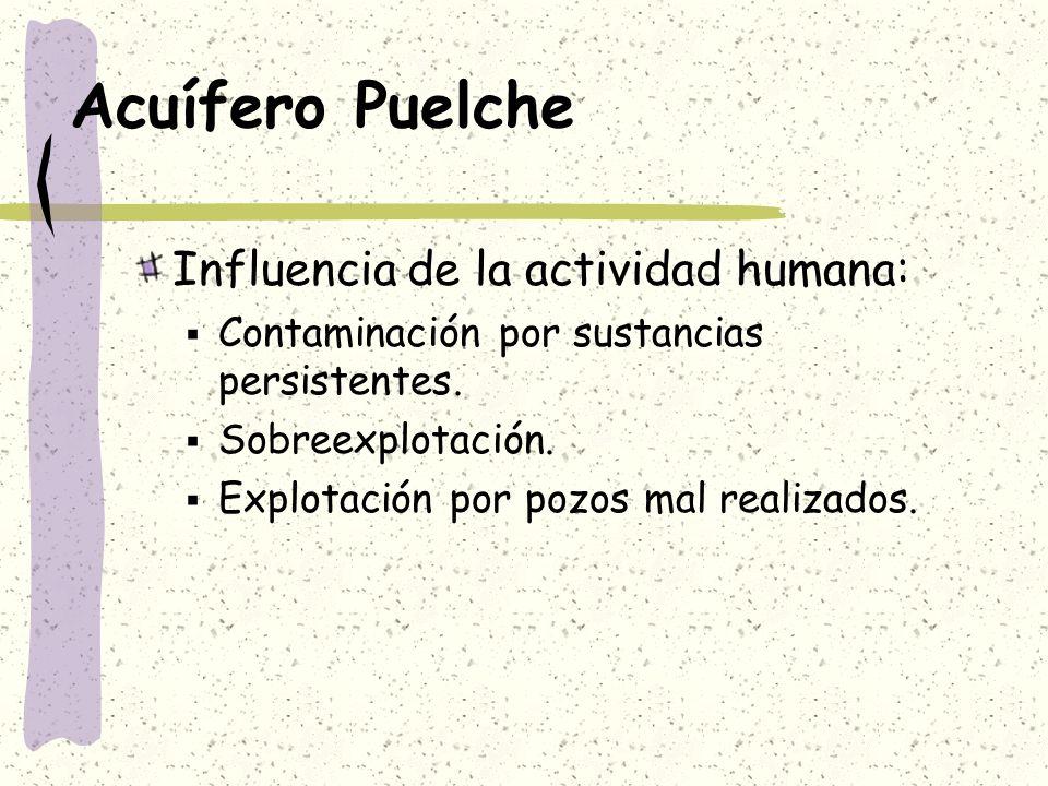 Acuífero Puelche Influencia de la actividad humana: