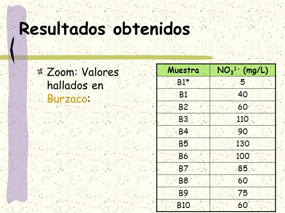 Resultados obtenidos Zoom: Valores hallados en Burzaco: Muestra