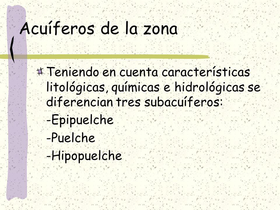 Acuíferos de la zonaTeniendo en cuenta características litológicas, químicas e hidrológicas se diferencian tres subacuíferos:
