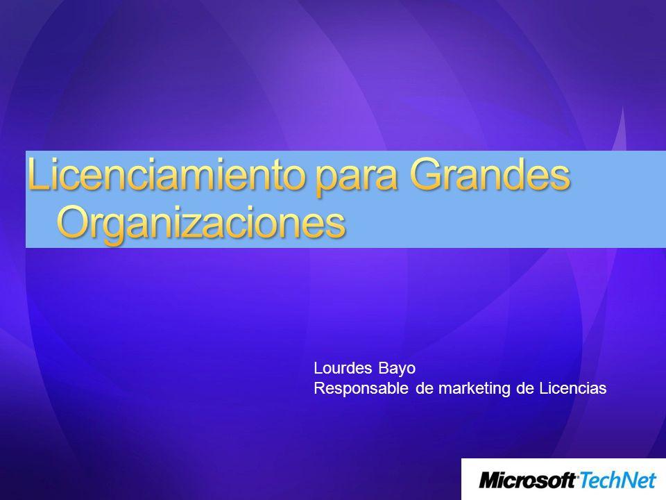 Licenciamiento para Grandes Organizaciones