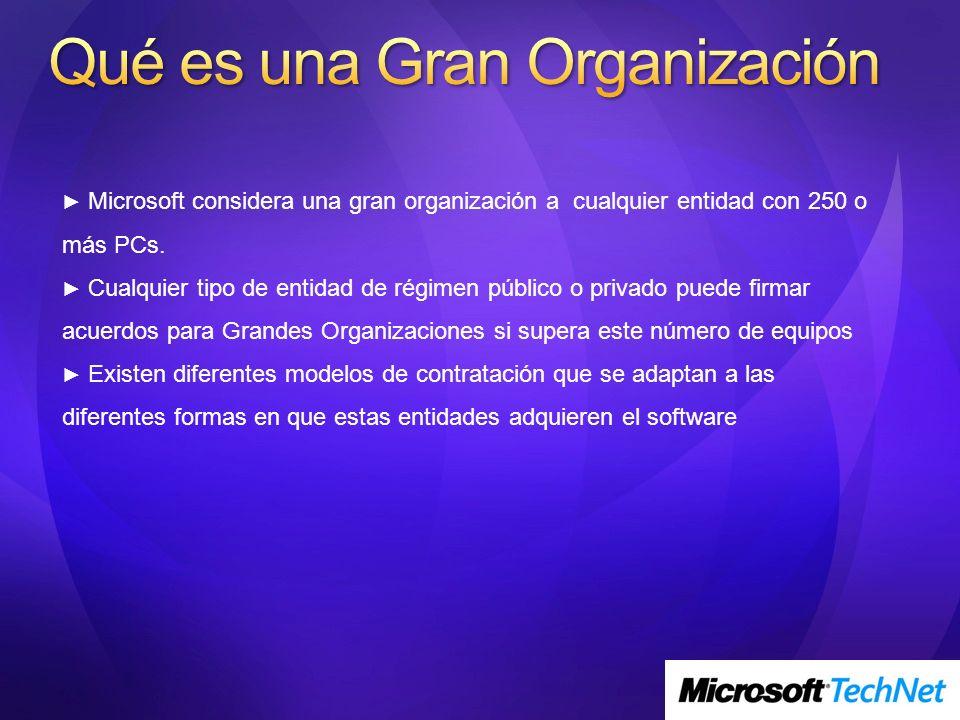 Qué es una Gran Organización