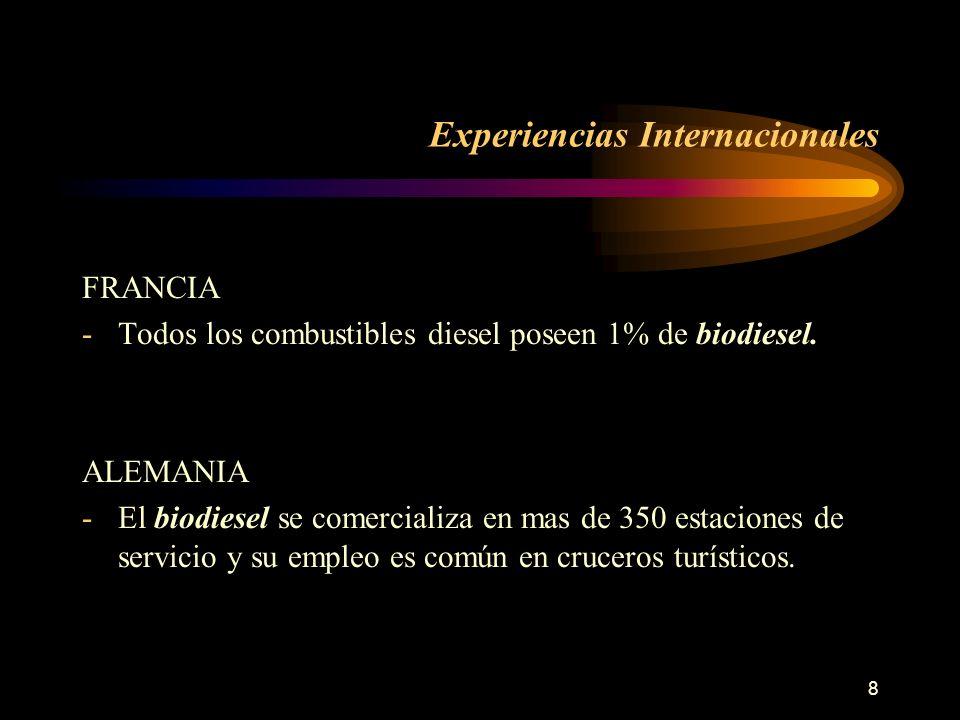 Experiencias Internacionales