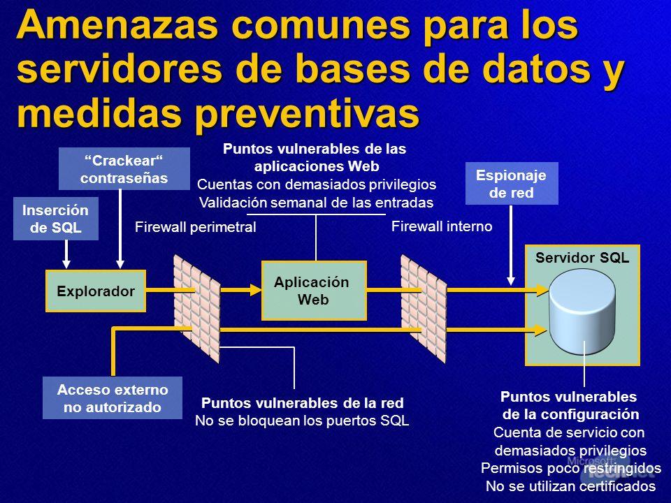 Amenazas comunes para los servidores de bases de datos y medidas preventivas