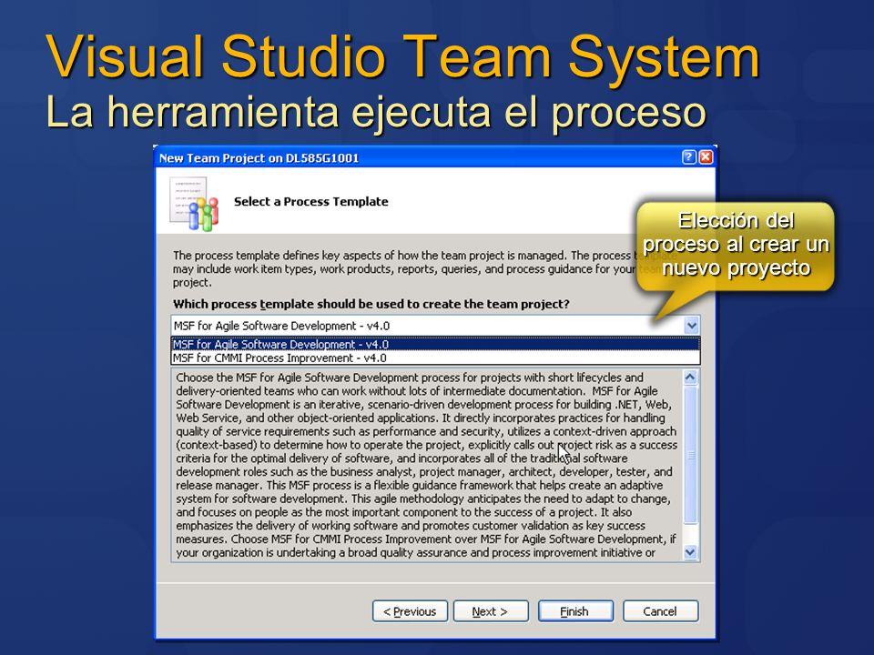 Visual Studio Team System La herramienta ejecuta el proceso