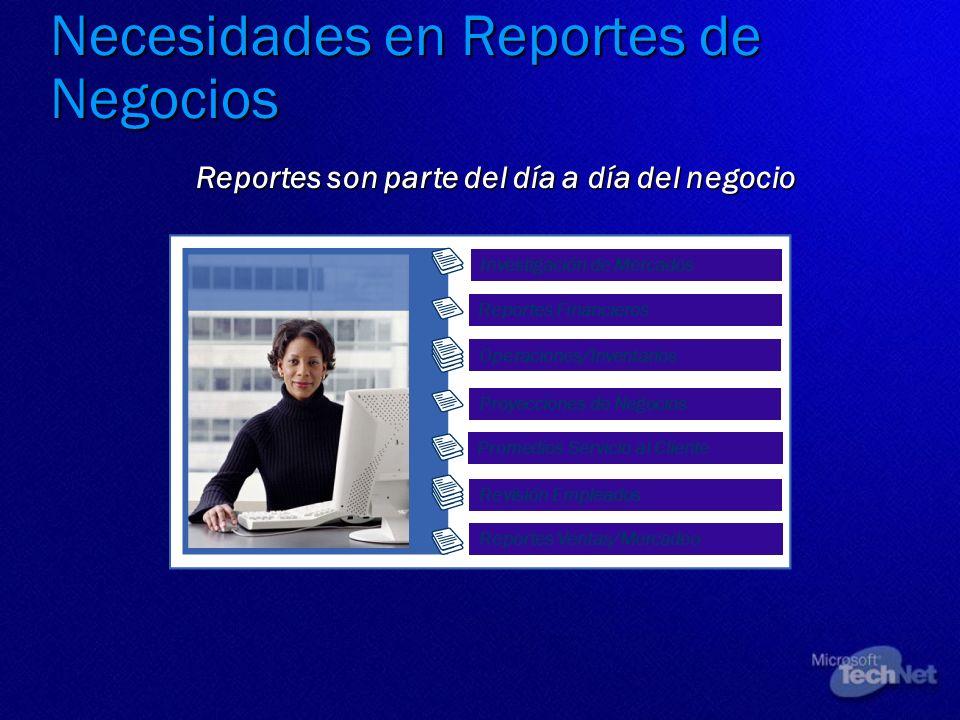 Necesidades en Reportes de Negocios