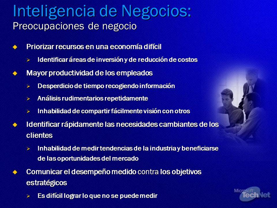 Inteligencia de Negocios: Preocupaciones de negocio