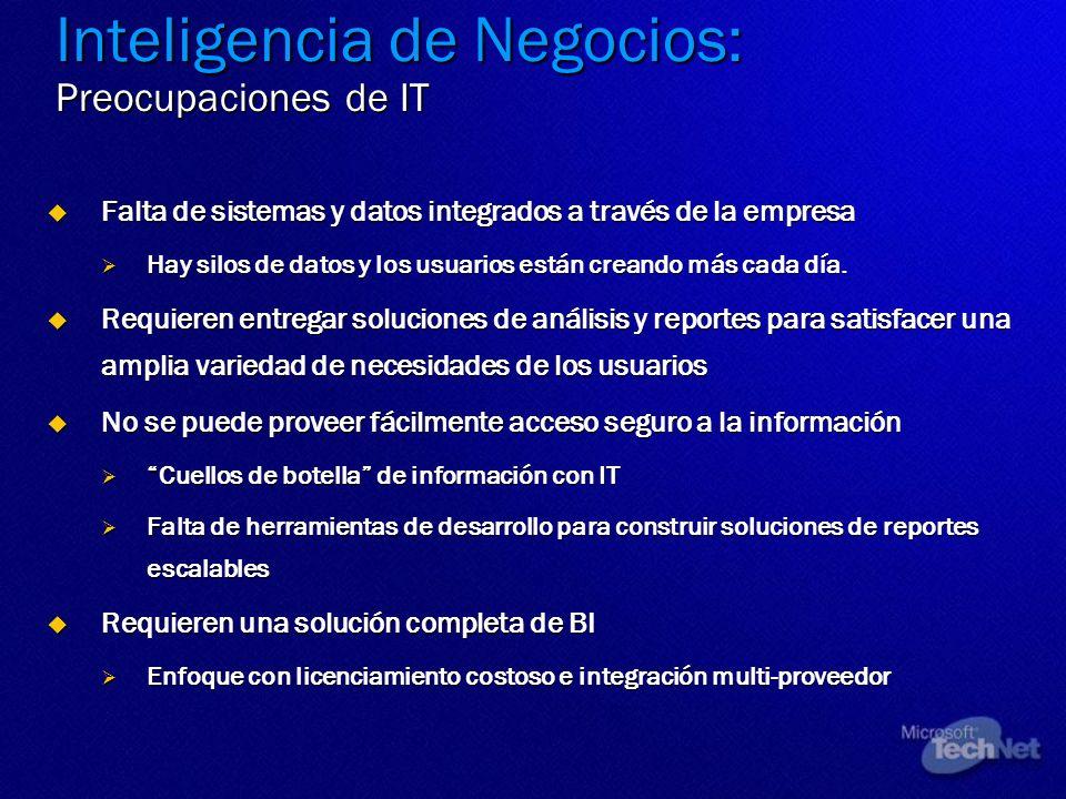 Inteligencia de Negocios: Preocupaciones de IT