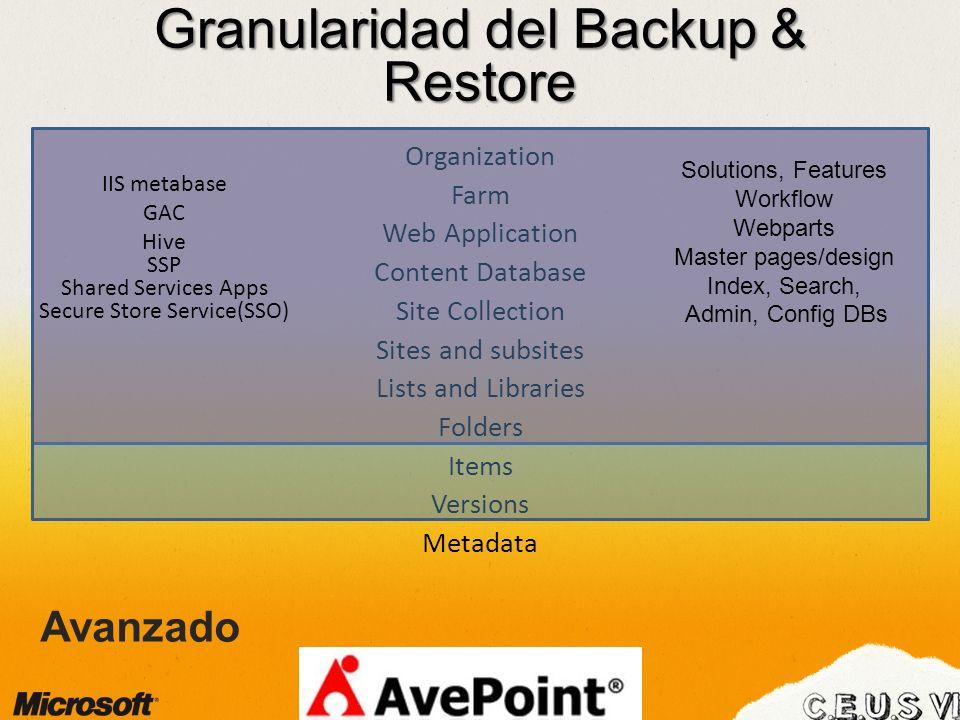 Granularidad del Backup & Restore