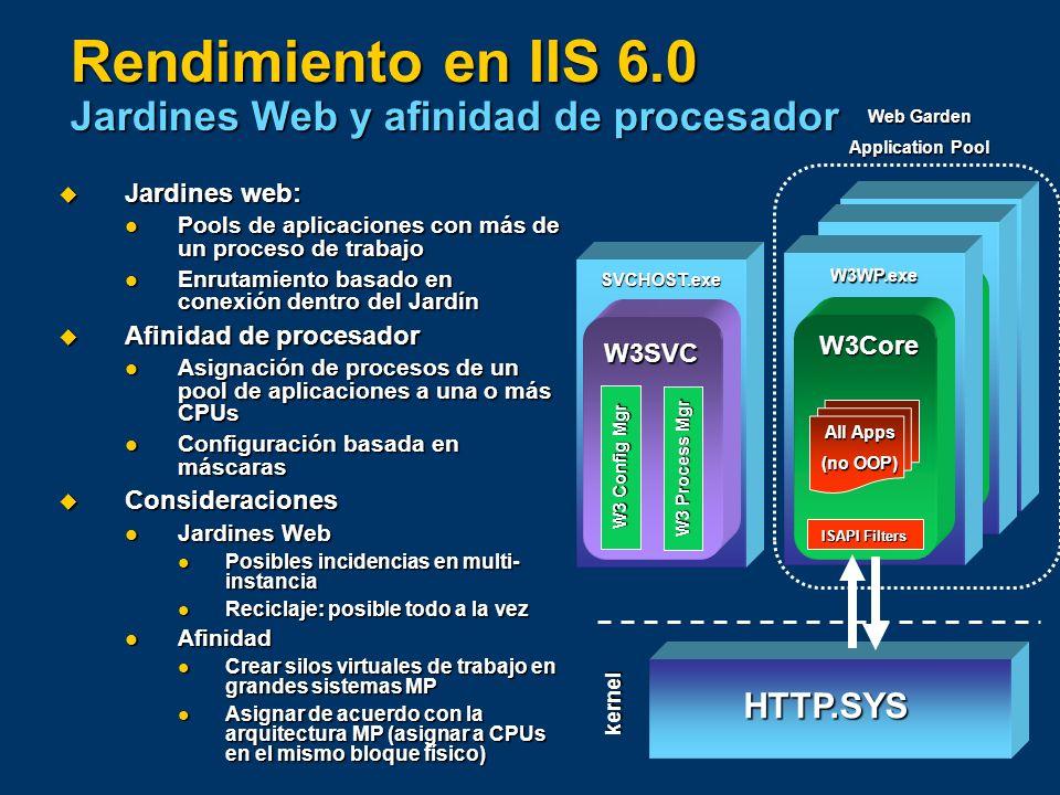 Rendimiento en IIS 6.0 Jardines Web y afinidad de procesador