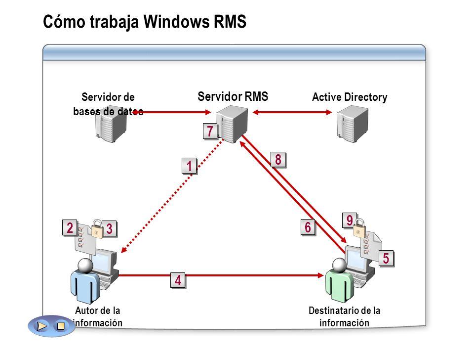Cómo trabaja Windows RMS